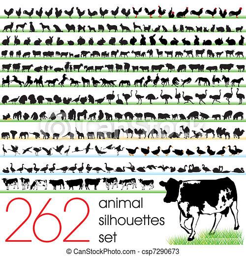 262, απεικονίζω σε σιλουέτα , θέτω , ζώο  - csp7290673