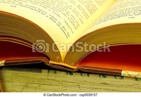 3, libro, aperto - csp0039157
