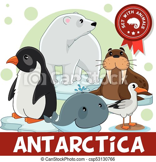 3 part animals of antarctica a set of cartoon animals clip art rh canstockphoto com antarctic animals clipart antarctica map clipart