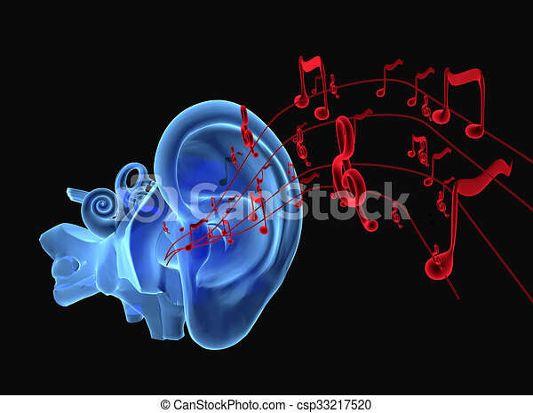 3d Ear Anatomy With Notes 3d Illustration Of Ear Anatomy With Music