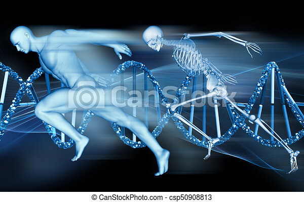 3d medical background with male figure and skeleton sprinting on dna  strands - csp50908813