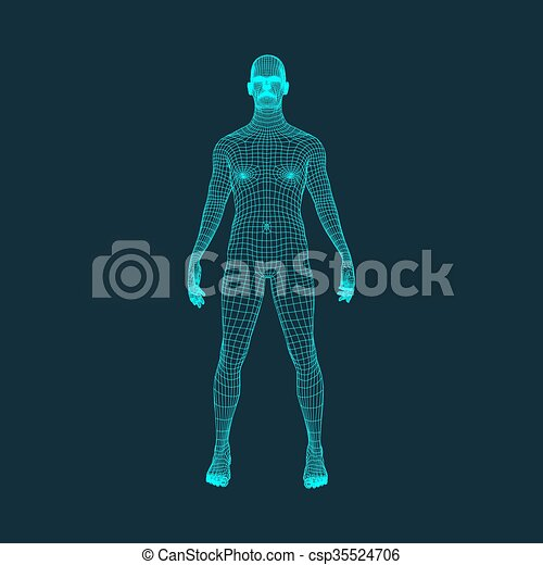 3D Model of Man. Polygonal Design. Geometric Design. Business, Science and Technology. 3d Polygonal Covering Skin. Human Polygon Body. Human Body Wire Model. - csp35524706
