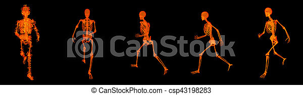 3d render walking fire skeleton by X-rays in red - csp43198283