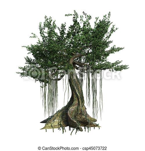 3d Rendering Kapok Tree On White 3d Rendering Of A Kapok Tree