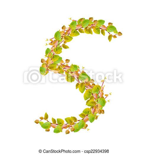 5, hojas, verde, número, alfabeto.
