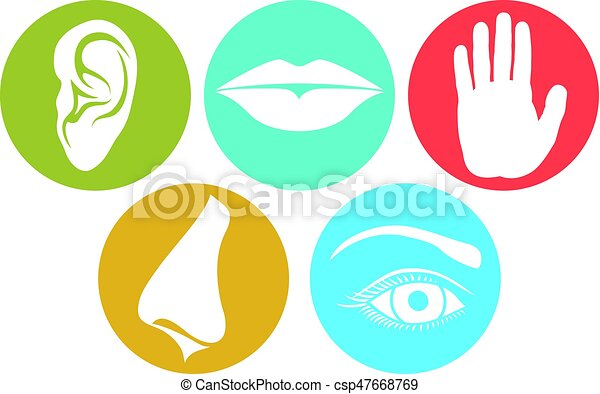 5 senses smell touch hearing taste and sight nose clip art rh canstockphoto com Sense of Taste Clip Art Sense of Taste Clip Art