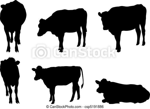 Seis siluetas de vaca - csp5191886