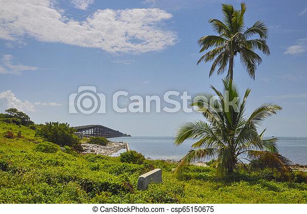 7 Mile Bridge, Florida Keys - csp65150675