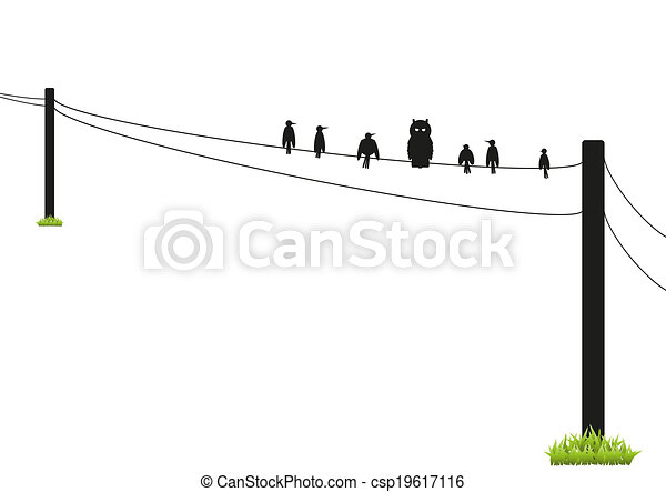72-birds on a wire silhouette. A selection of birds on a wire in ...