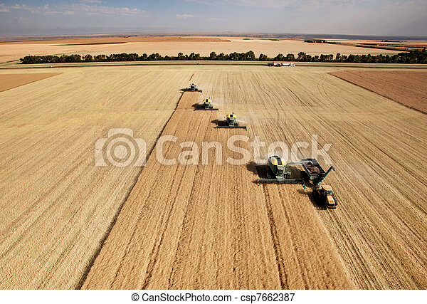aéreo, colheita, vista - csp7662387