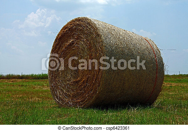 A bale of hay in an open field. - csp6423361