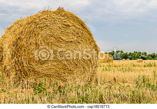 a bale of hay - csp18518713