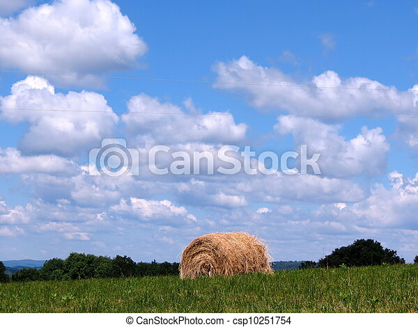a bale of hay - csp10251754
