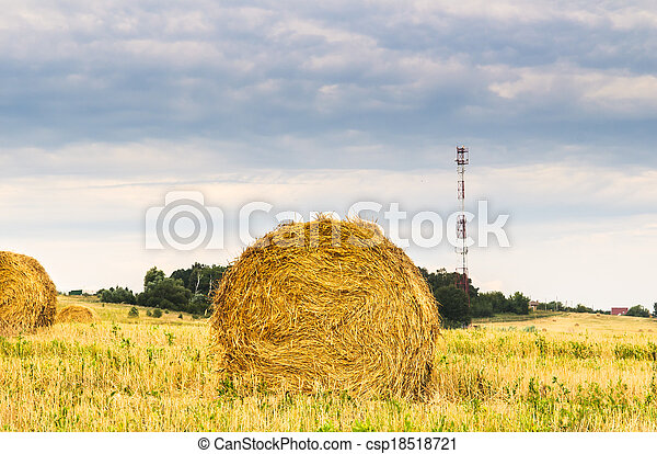 a bale of hay - csp18518721