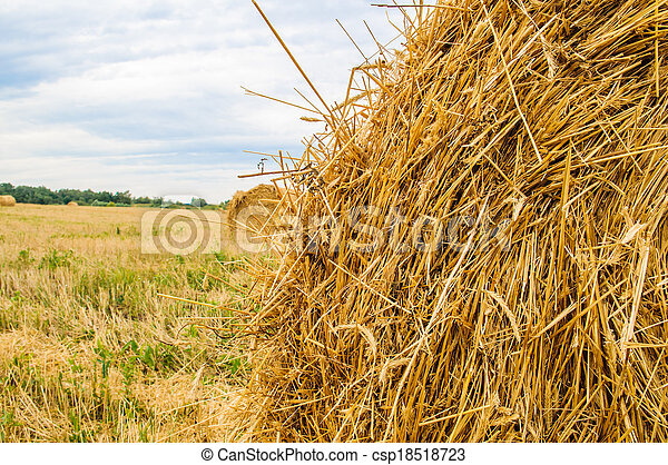a bale of hay - csp18518723