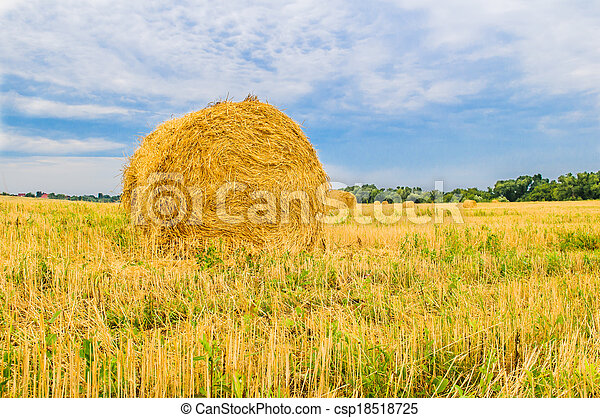 a bale of hay - csp18518725