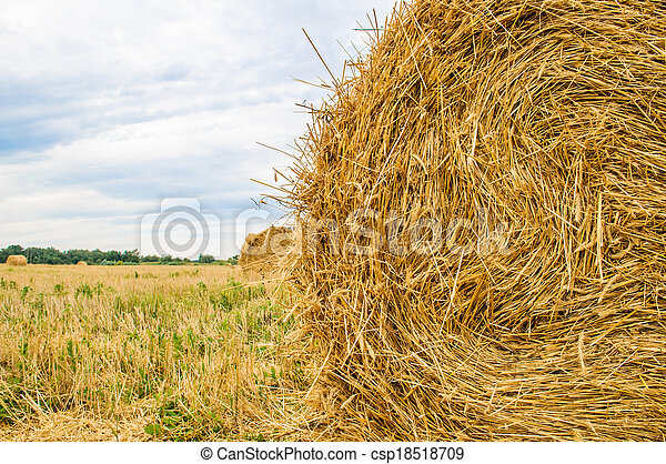 a bale of hay - csp18518709