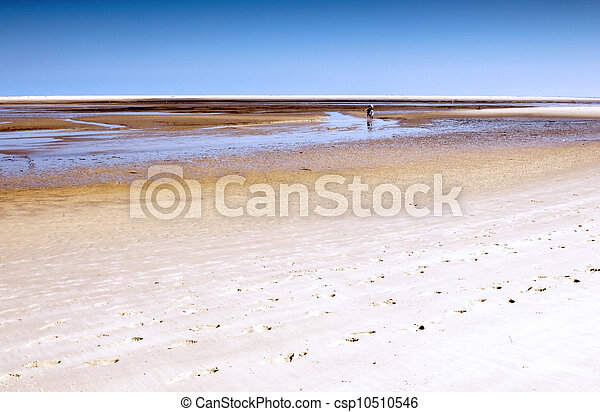 A beach at low tide - csp10510546