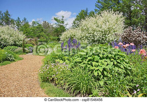 a beautiful garden in early summer - csp81546456