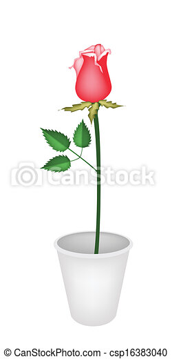 Eps vector of a beautiful red rose in flower pot a symbol of a beautiful red rose in flower pot csp16383040 ccuart Image collections