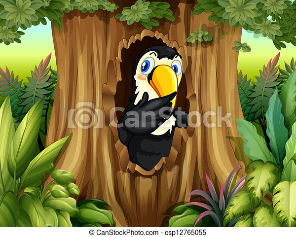 A big bird in the forest - csp12765055