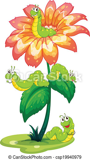 A big flower with worms - csp19940979