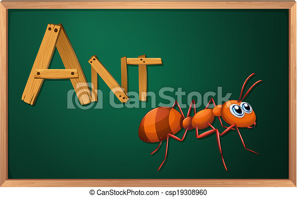 A blackboard with an ant - csp19308960