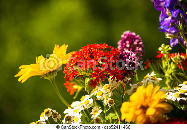 A bouquet of bright spring flowers of various types a colorful a bouquet of bright spring flowers of various types csp52411466 mightylinksfo