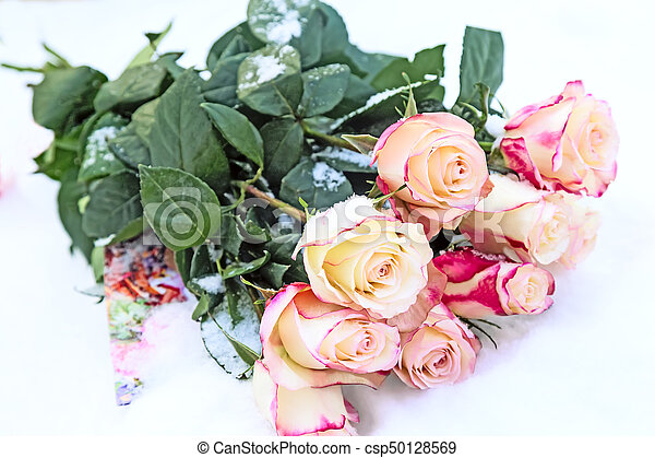 A bouquet of roses in the snow. - csp50128569