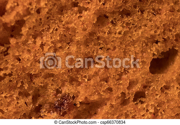 A brown cookie texture - csp66370834