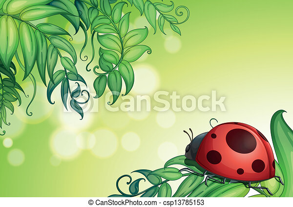 A bug above the green leaves - csp13785153