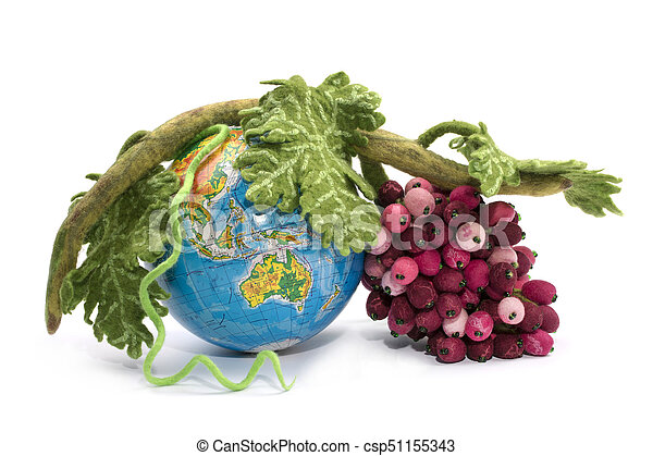A bunch of grapes from felted wool next to a globe on a white background - csp51155343