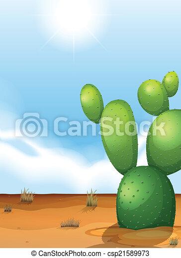 A cactus plant in the desert - csp21589973