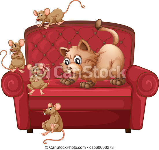 A cat and rats on sofa - csp60668273