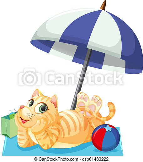 A cat on summer holiday - csp61483222