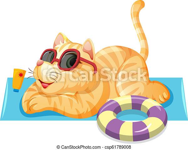 A cat on summer theme - csp61789008