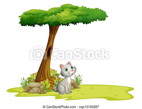 A cat under a tree - csp13150287