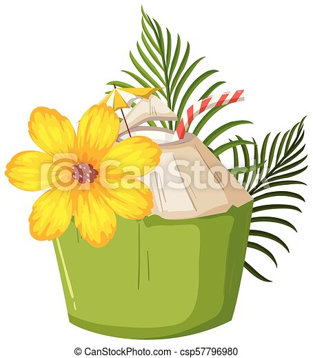 A Coconut on White Background - csp57796980