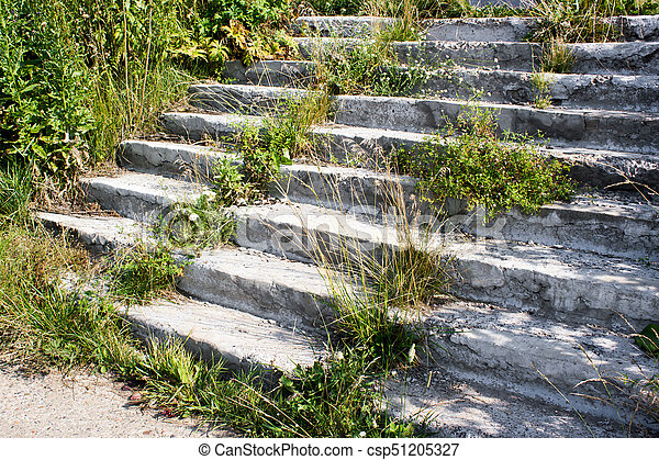 A concrete staircase with sprouted grass - csp51205327