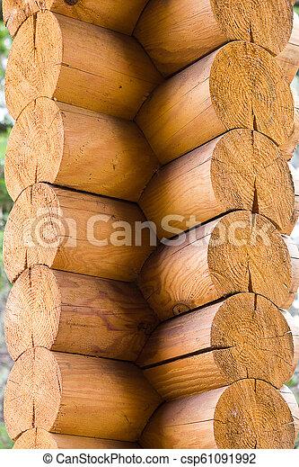 a corner of a wooden log - csp61091992