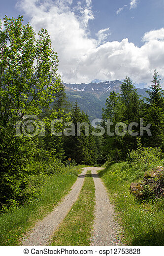 A country road in the Swiss Alps - csp12753828