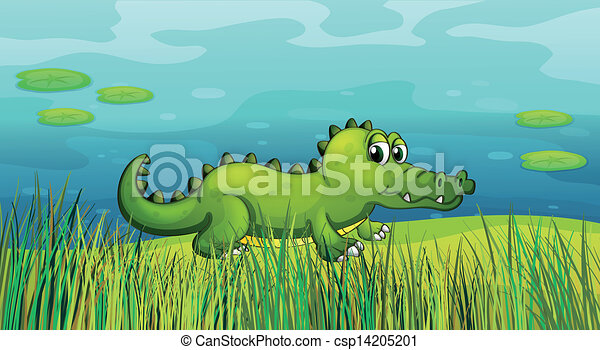 A crocodile beside the pond  - csp14205201