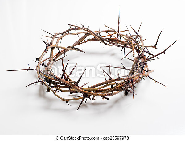 A crown of thorns on a white background - Easter. religion. - csp25597978