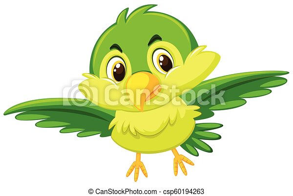 A cute green bird - csp60194263