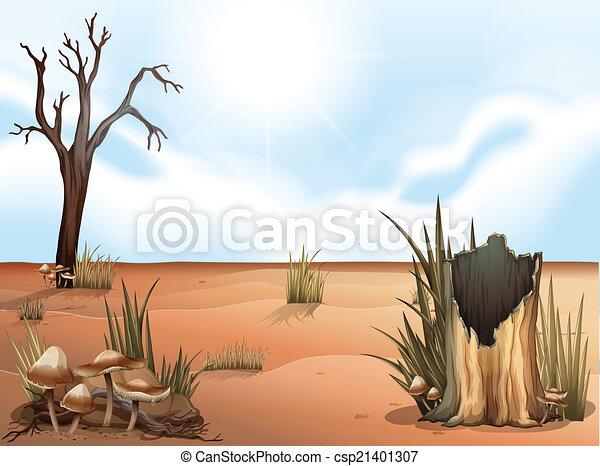 A desert - csp21401307