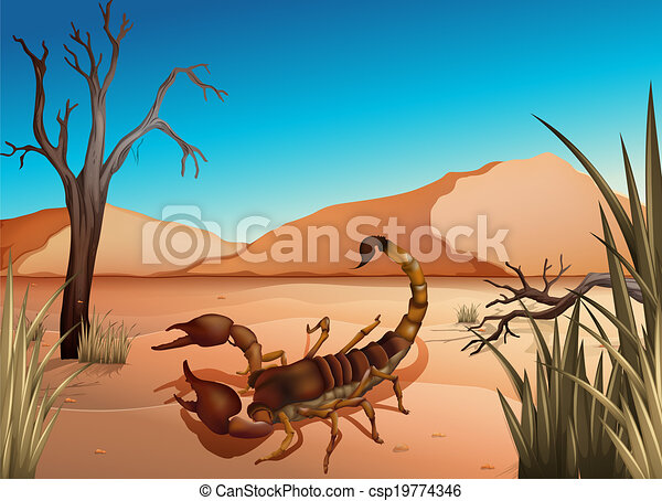A Desert With A Scorpion Illustration Of A Desert With A Scorpion