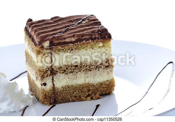 A dessert of tiramisu - csp11350526