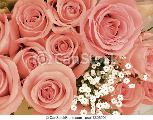 A Dozen Coral Pink Roses With A Sprig Of Babys Breath