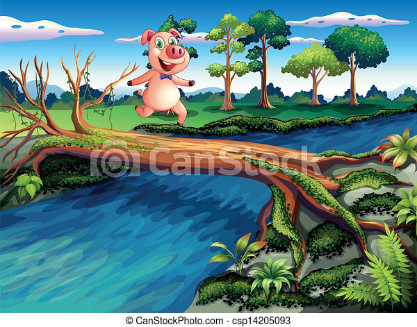 A female pig crossing the river - csp14205093