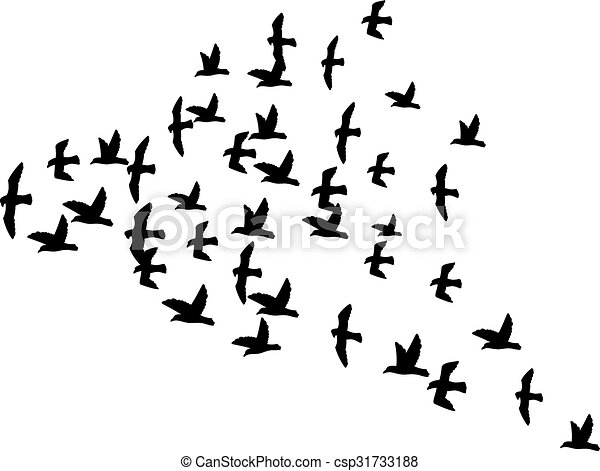 a flock of flying birds  - csp31733188